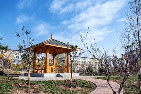 齐鲁医药学院成人高考校园风景