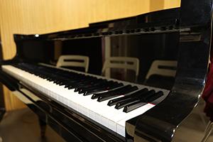 上海美达菲学校钢琴教室