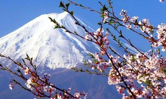 日本留学签证办理流程是什么?
