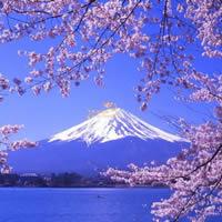日本私立大学有哪些优势?