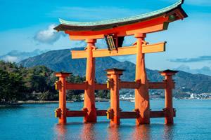 位于日本九州的大学有哪些?