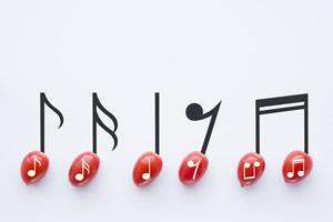 想申请法国音乐学院需要满足哪些条件?