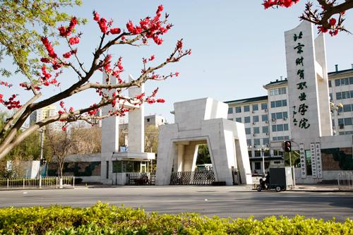 北京会计专业大专学校有哪些