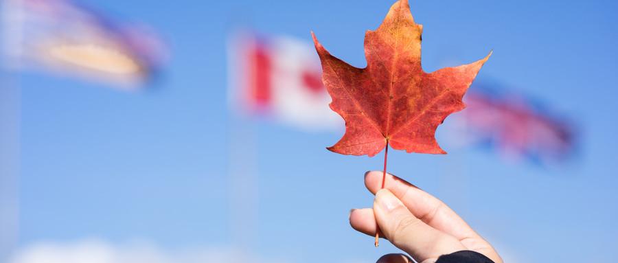 加拿大留學條件
