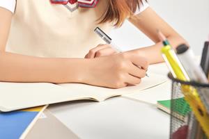 高考生留学可以选择哪些项目?(二)