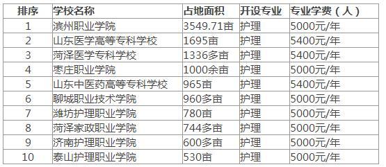 山东省专科学校排名榜_山东省农业专科学校
