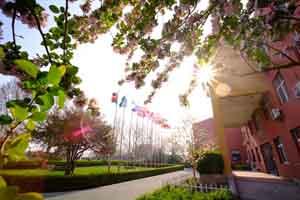 北京市私立树人瑞贝学校校车站点有哪些?