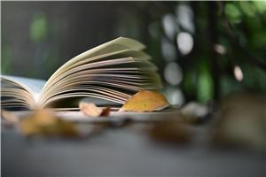 攻读上海财经大学在职研究生必须是本科有学位吗?