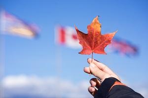 加拿大留學政策,加拿大留學