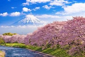北二外日本留學申請條件,日本留學