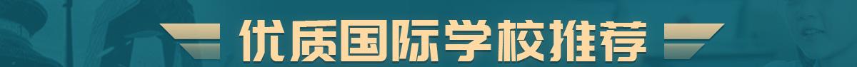 北京市大兴区国际学校